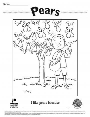 Pears Coloring Sheet