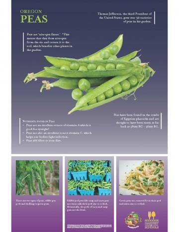 Peas Oregon Harvest Poster