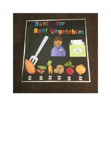 Root Vegetable Bulletin Board