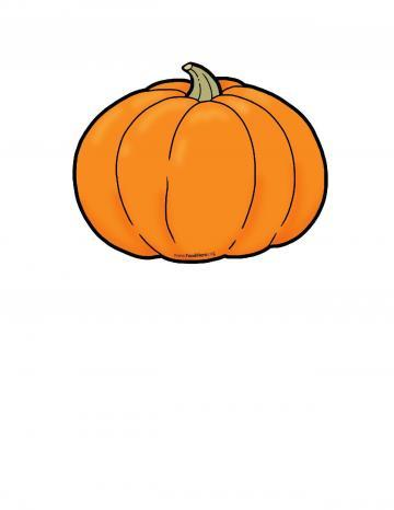Pumpkin Color Illustration