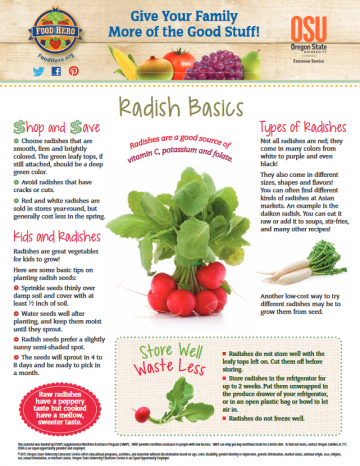 Radishes Monthly Magazine