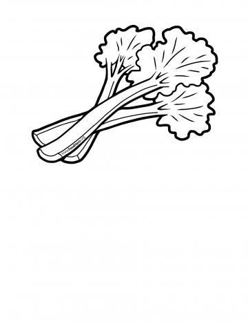 Rhubarb Blackline