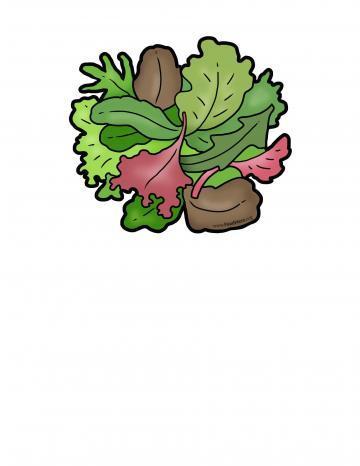Ilustratión de Hojas Verdes para Ensalada