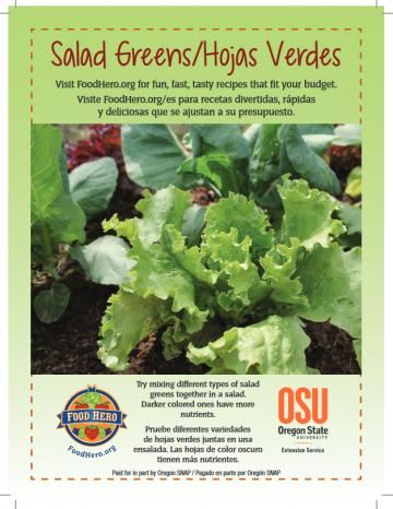 Salad Greens English and Spanish