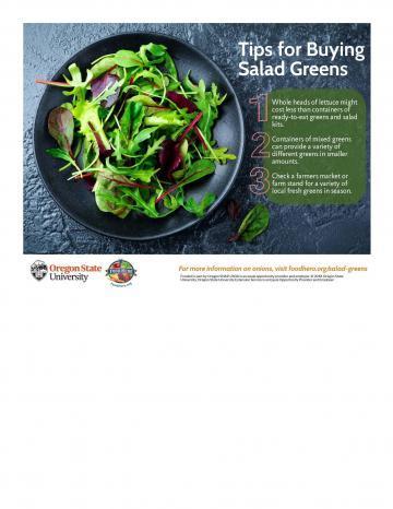 Salad Greens Infographic