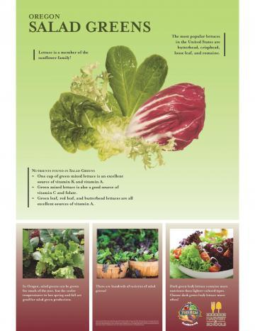 Salad Greens Oregon Harvest Poster