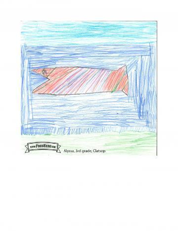 Kids Art Winners - Salmon