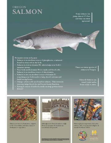 Salmon Oregon Harvest Poster