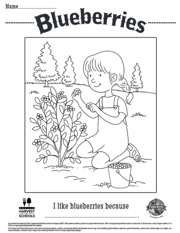 Blueberries Coloring Sheet