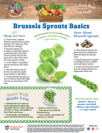 Brussels Sprouts Monthly Magazine