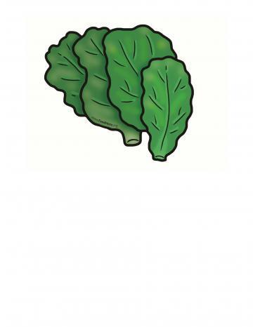 Ilustración de Espinacas