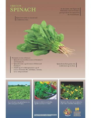 Spinach Oregon Harvest Poster