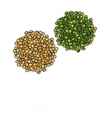 Ilustración de Chícharos Partidos