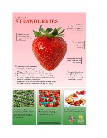 Strawberries Oregon Harvest Poster
