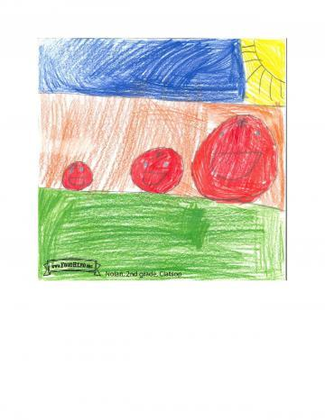 Kids Art Winners - Tomatoes