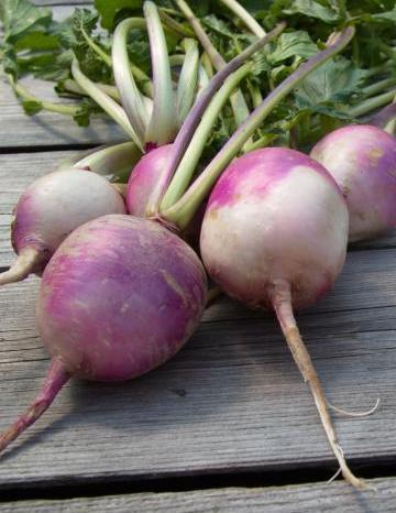 Image of Turnips