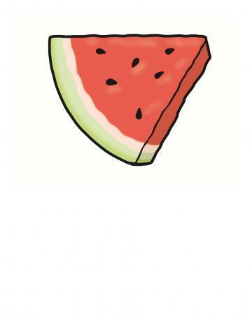 Watermelon Illustration