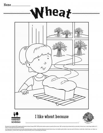 Image of Wheat Coloring Page