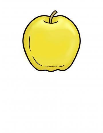 Yellow Apple Illustration