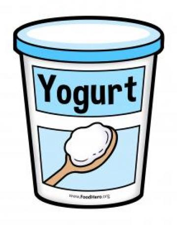 Yogurt Container - English