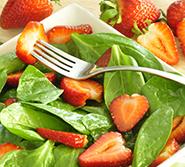 All Salads