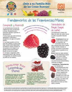 Spanish Raspberry Blackberry Food Hero Monthly Cover Image Front