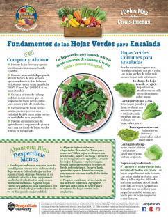 Imagen del Mensual de las Hojas Verdes
